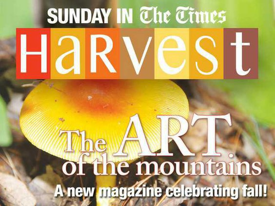 0827Home-Harvestpromo