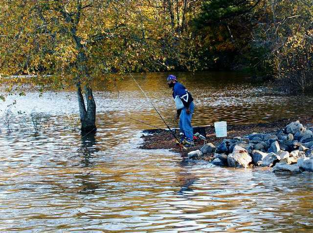 Corps: Rising Lanier has submerged some docks - Gainesville