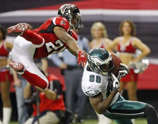 Falcons6