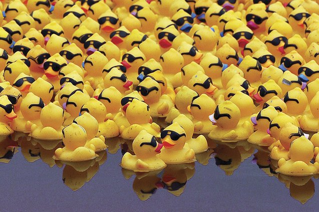 2016 Rubber Duck Derby