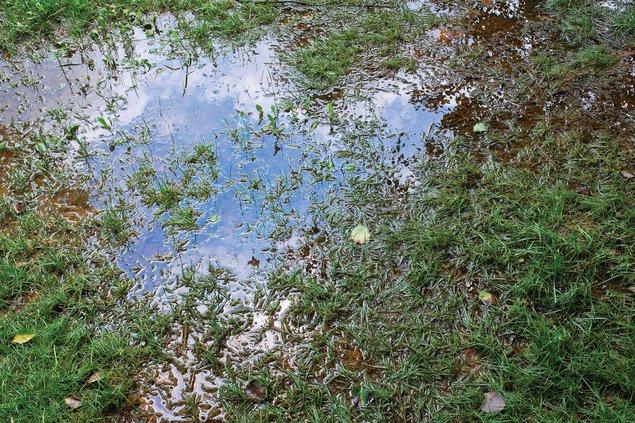 06012018 WATER 2.jpg