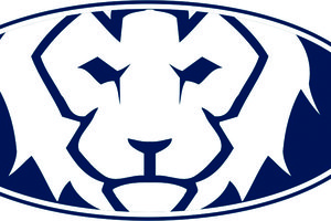 Lakeview Academy Logo