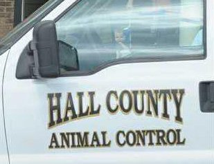 Animal Control vehicle.jpg